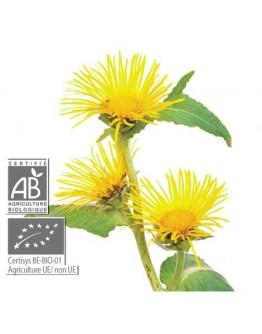 Welriekende alant bio Inula graveolens etherische olie-Pranarôm 5 ml