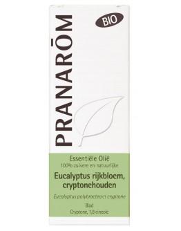 Eucalyptus polybractea ct cryptone bio etherische olie-Pranarôm 10 ml