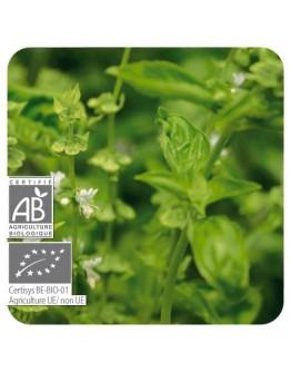 Basilicum exotische bio etherische olie-Pranarôm 10 ml
