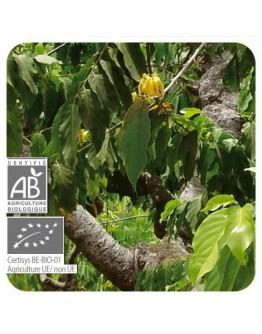 Ylang ylang totum bio etherische olie Pranarôm 5 ml