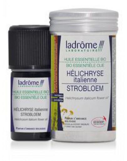 Strobloem Helichrysum Italicum etherische olie-Ladrôme 5 ml