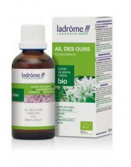 Daslook Allium Urcinumtinctuur-Ladrôme 50 ml