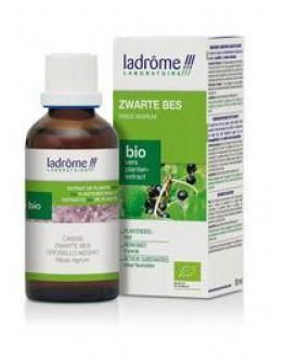 Zwarte bes Ribes nigrum tinctuur-Ladrôme 50 ml