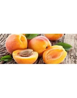 Abrikozenpitolie koudgeperst bio-Herbacos 50 ml
